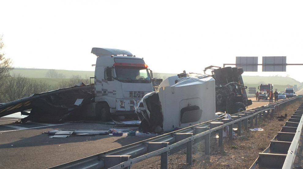 Шофьор загина при катастрофа между камиони (СНИМКИ)