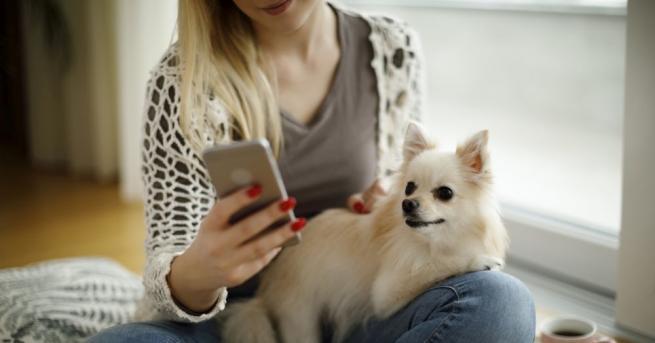 Нови мобилни приложения се появяват всеки ден. Понякога откриването на