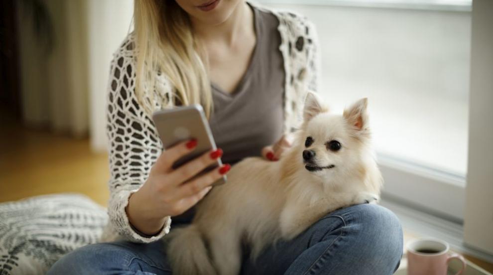 Мобилни приложения, от които всяко момиче има нужда (ВИДЕО)