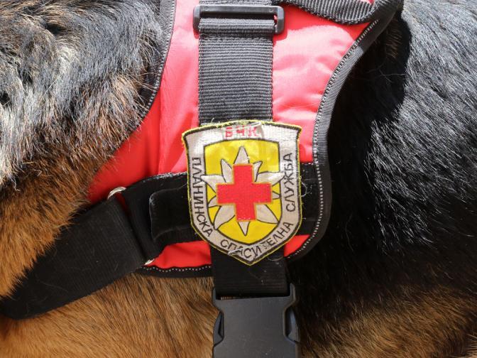бчк куче спасители спасител планинска спасителна служба планина витоша алеко