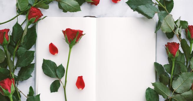 Снимка: Днес мъжете в Испания подаряват роза и книга на любимата си