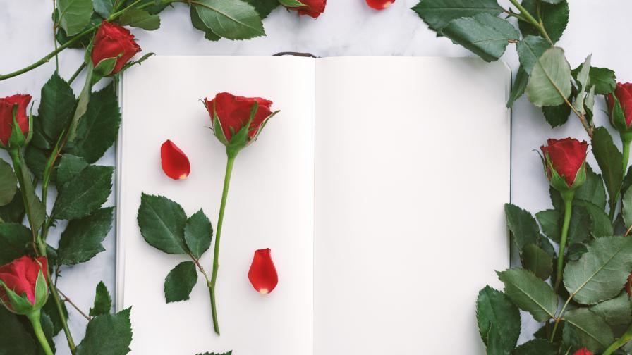 """<p>Днес <span style=""""color:#ffbc00;""""><strong>мъжете в Испания подаряват роза</strong></span> и книга на любимата си&nbsp;&nbsp;</p>"""