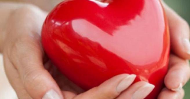 Канадски учени откриха в обвивката на сърцето клетки, които могат