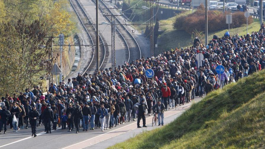 <p>ООН: Унгария лишава мигранти от храна</p>