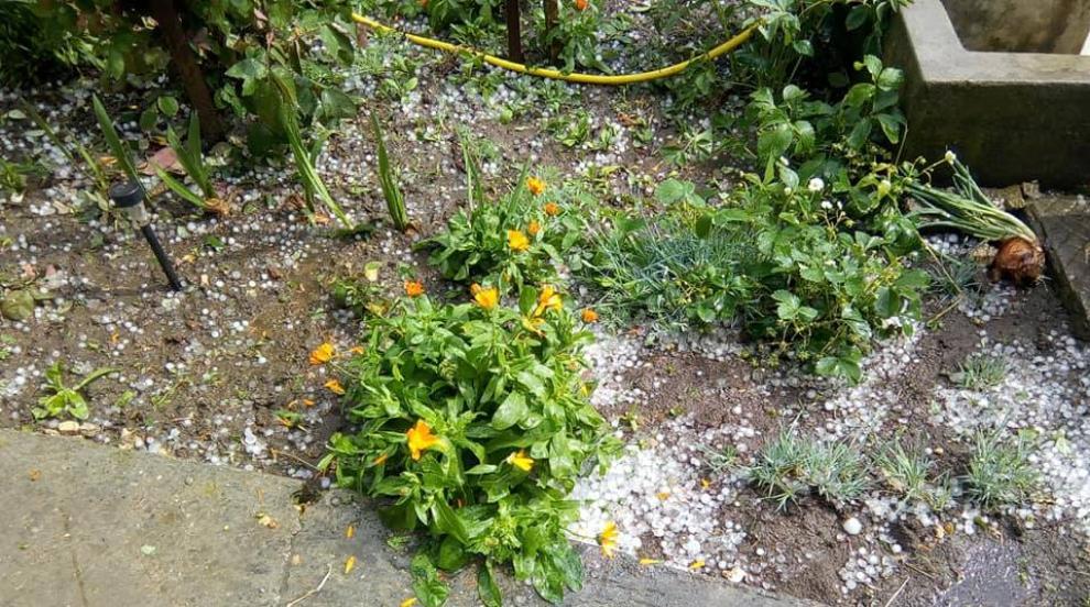 Градушка и ураганен вятър са нанесли сериозни щети в Свищовско