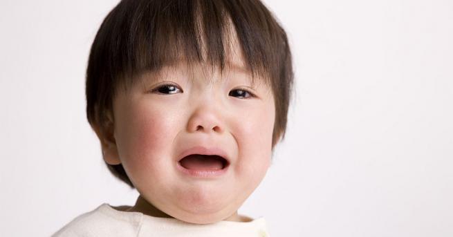 Снимка: Това го има само в Япония: сумисти разплакват бебета, за да ги каляват