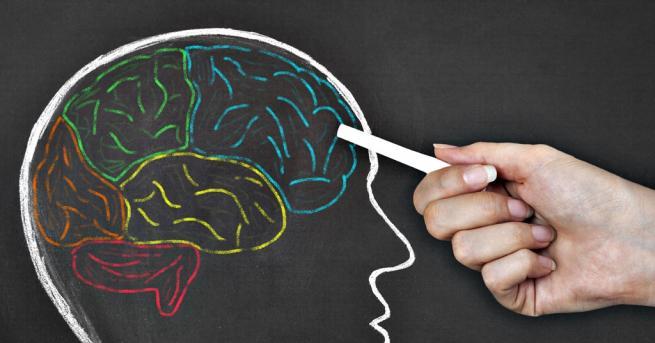 Любопитно Митове за мозъка и ученето, на които сляпо вярваме