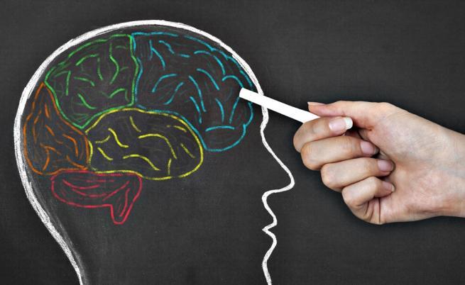 Митове за мозъка и ученето, на които сляпо вярваме