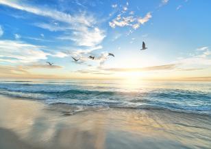 В близко бъдеще нивото на океаните ще се покачи