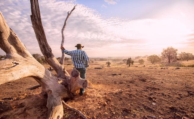 Рекордна суша в Сидни, ограничават водата