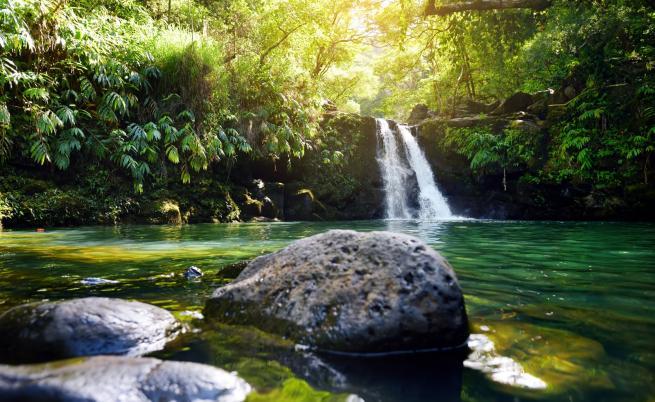 о. Мауи, Хавай