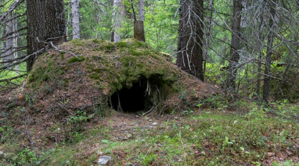 Жител на Тува живял месец в бърлогата на ранилата го мечка