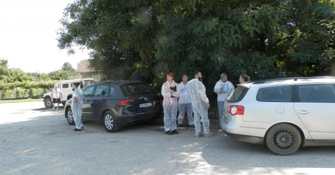 Снимка: Бедствено положение и в област Плевен заради Африканската чума