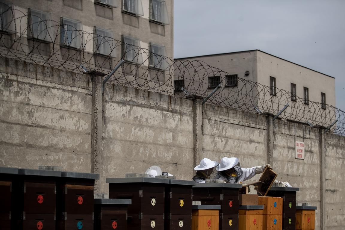 """Медът се нарича """"Брукон"""". Това е жаргон, който се отнася до това, че е """"в кълбото"""". Името е избрано в проучване на местен вестник. Логото е проектирано от самите затворници."""