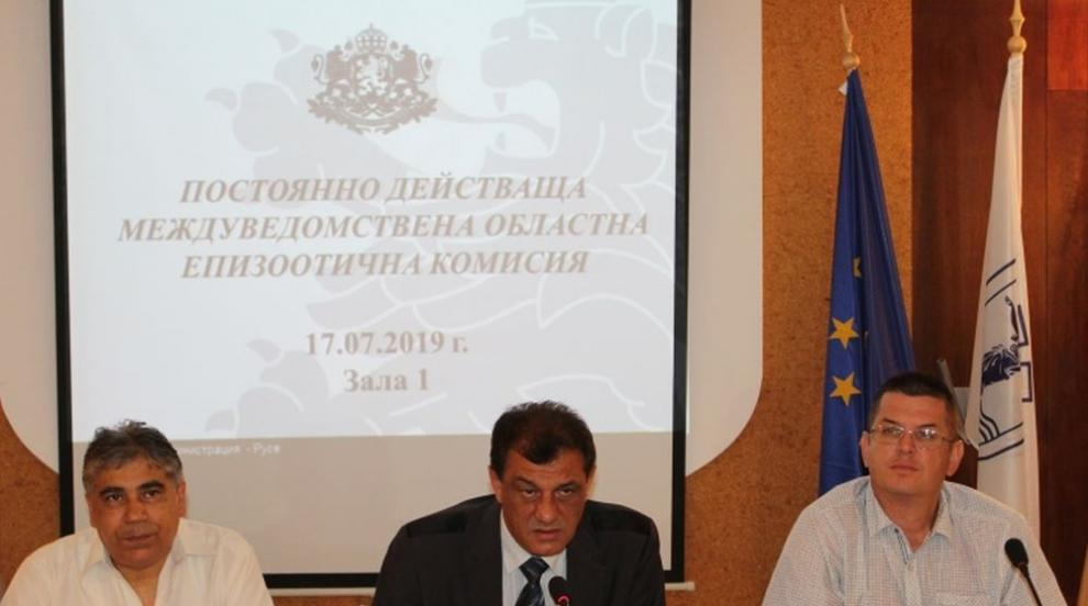 Започна евтаназирането на свинете в Русенска област