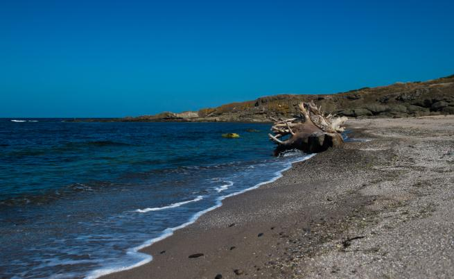 плаж Листи