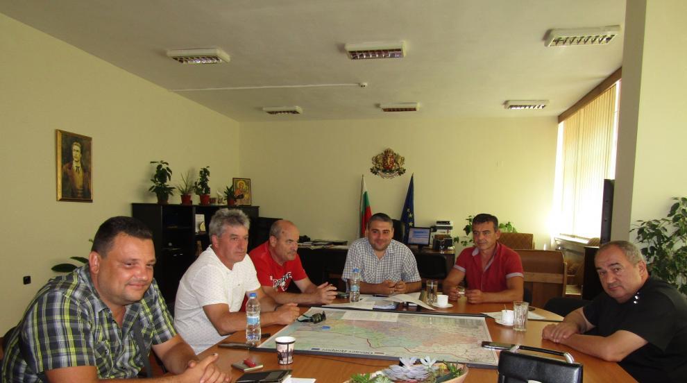 Обявиха бедствено положение в област Добрич заради  африканската чума по...