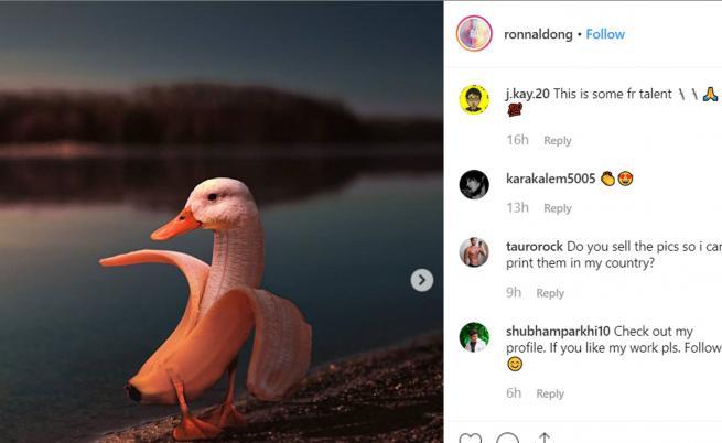 Тези сюреалистични снимки на животни ще ви изумят