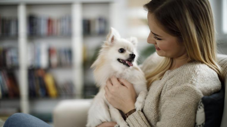 Какво си мислят кучетата, когато им се усмихваме?