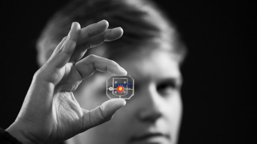 Учени създадоха мигащо изкуствено око
