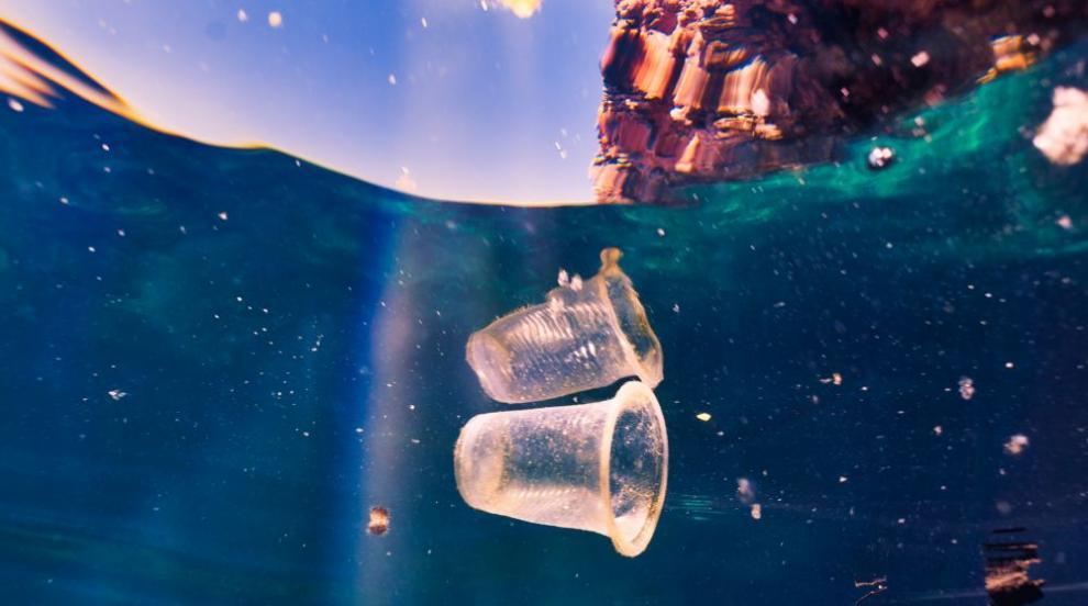 Хавиер Бардем: Океаните имат нужда от нас