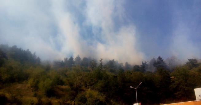 Остава частичното бедствено положение в Дупница заради големия пожар край