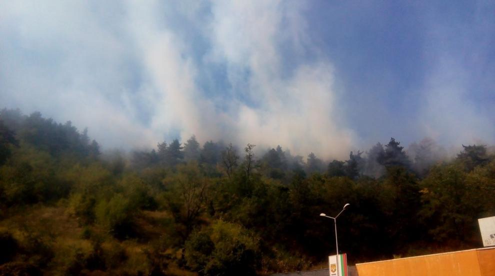Остава частичното бедствено положение в Дупница заради големия пожар