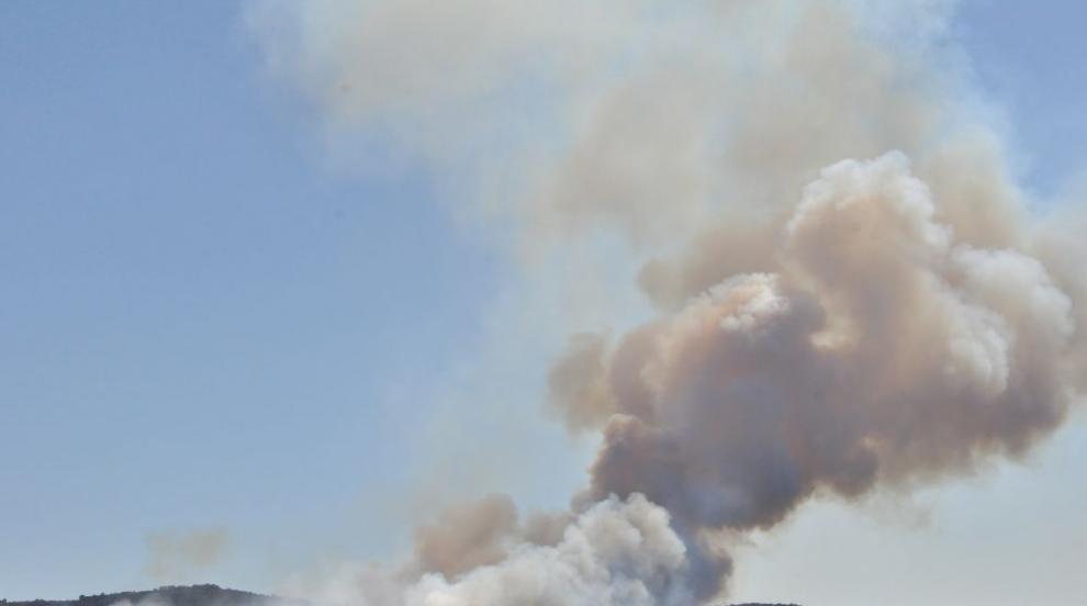 Общо 8000 декара обхванаха пламъцитев Хасковско (СНИМКИ)