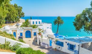<p><strong>Тунис</strong> бележи <strong>бум в посещенията </strong>на туристи</p>