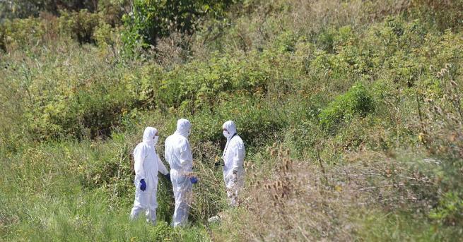 Човешки останки от две тела са открити край софийското село