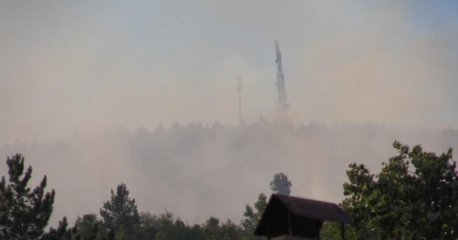 Снимка: Ново огнище на пожара край Реброво