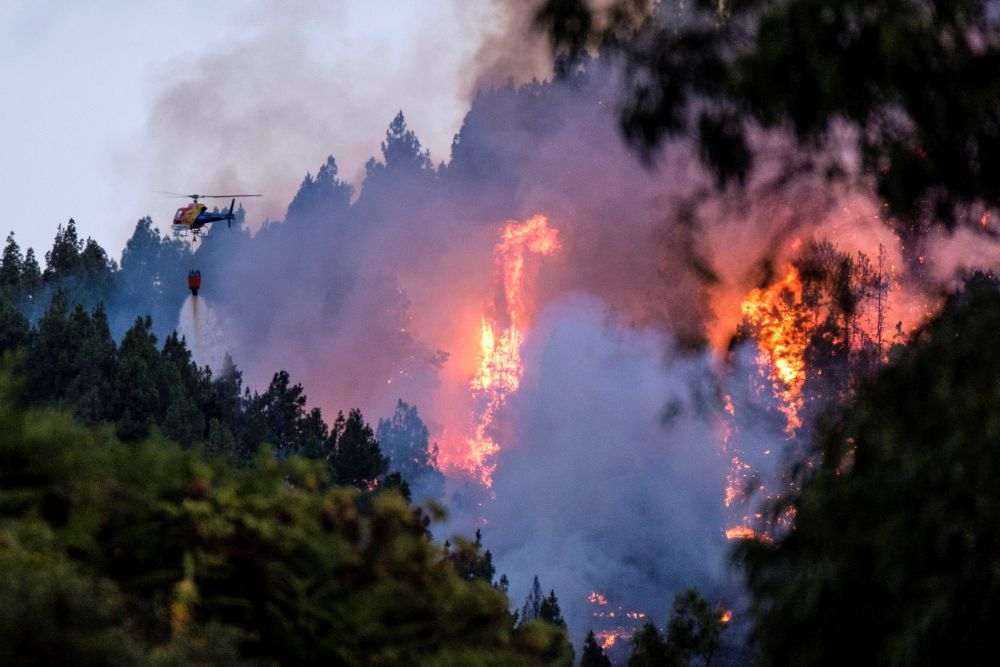 Около4000 душиса евакуирани