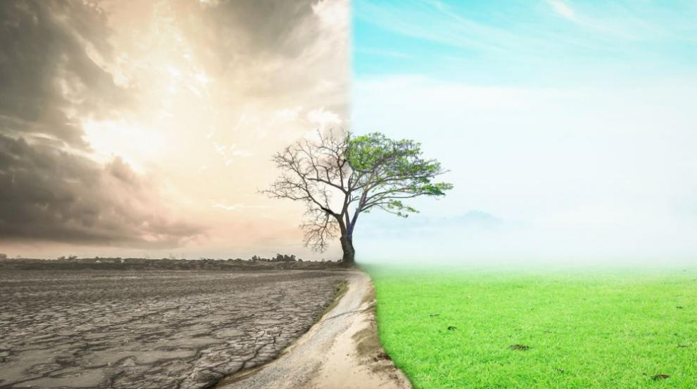 Учени: Екстремните климатични условия могат да предизвикат масова гибел...