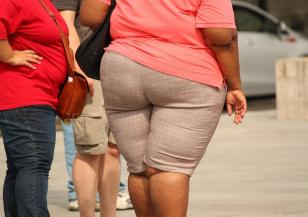Наднорменото тегло е плюс при големи горещини