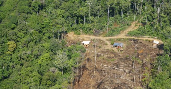 Членове на бразилското туземно племе мура боядисаха телата си с