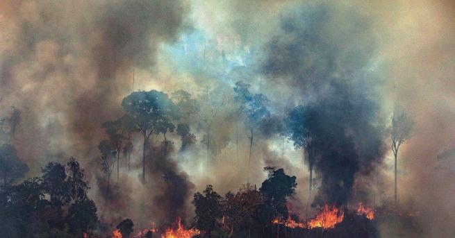 Свят Огненият ад в Амазония заплашва човечеството Болсонаро реагира на