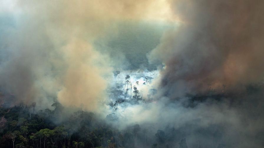Амазония гори и е по-ужасно отпреди