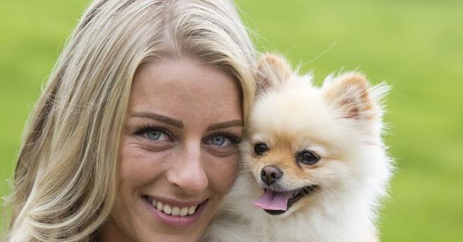 На 26-ти август отбелязваме Световния ден на кучето. На този