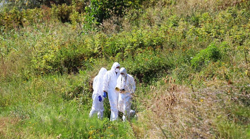 Етикетът на бидоните издал извършителите на двойното убийство