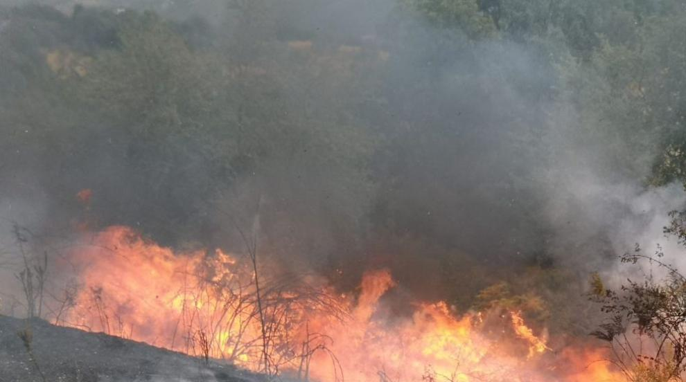 Голям пожар гори над Котел