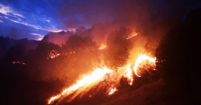 Над 100 служители на горите и пожарникари гасиха пожар край