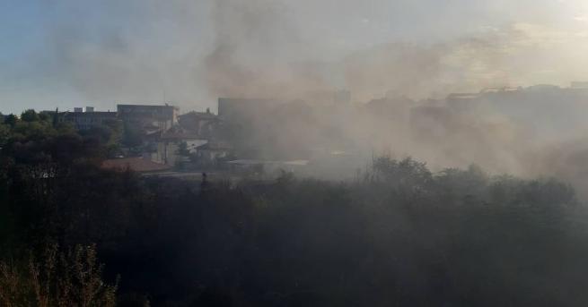 Няколко големи пожара горят на територията на Старозагорска област. БГНЕС