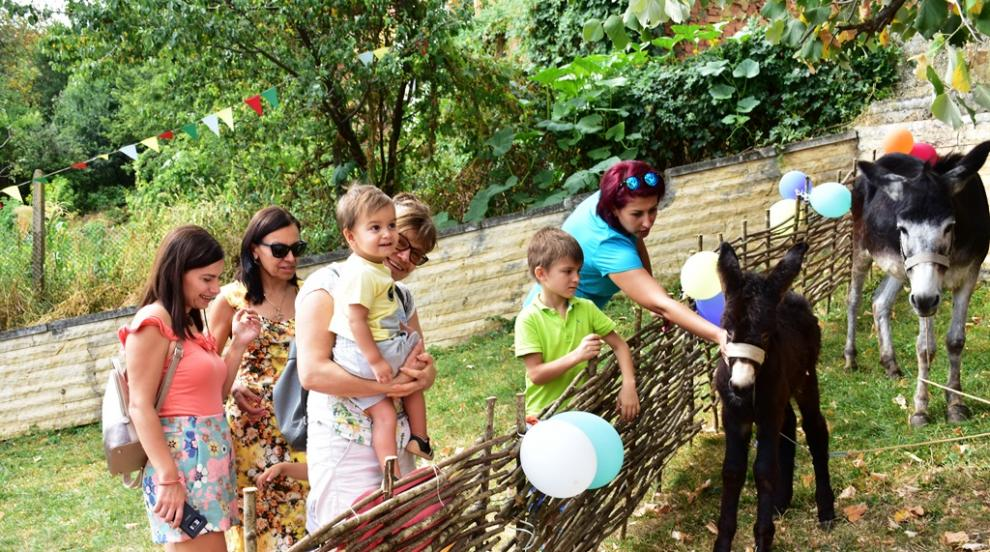 "Второ издание на детски карнавал ""Магаренце"""