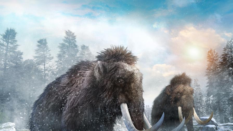 <p>Защо повечето <strong>фосили</strong> са на индивиди от <strong>мъжки пол</strong></p>