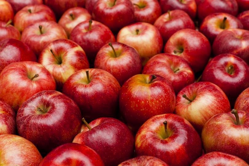 7 плода, които да ядете по време на бременност