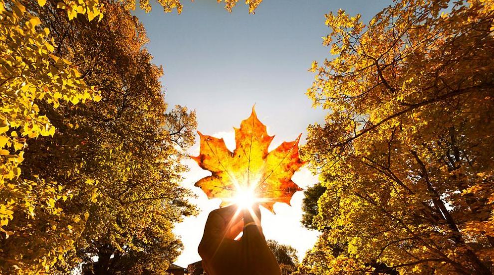 Слънце и днес