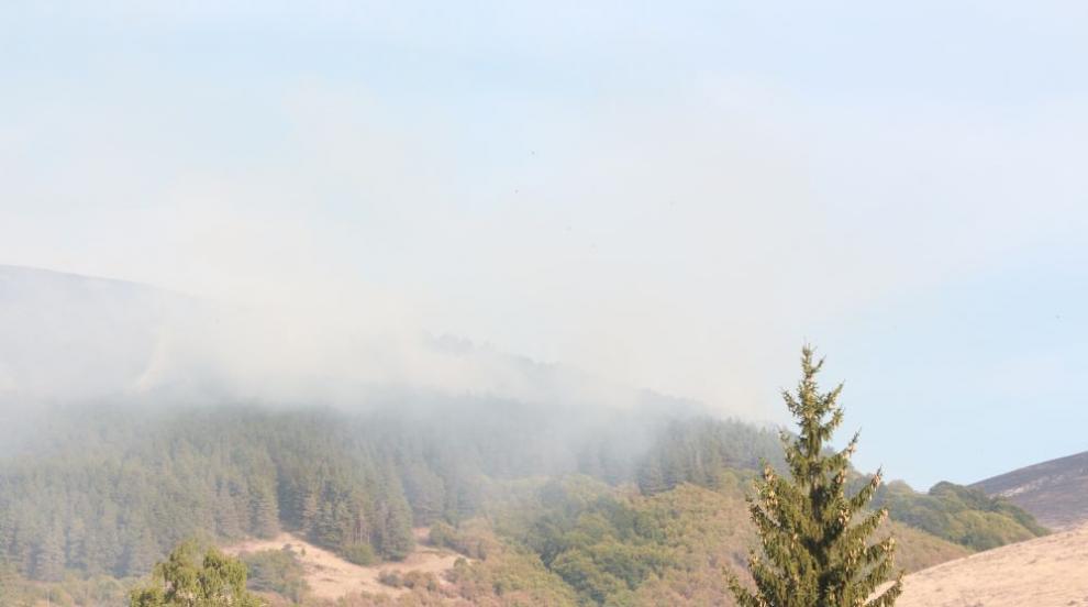 Възобновиха гасенето на пожара в землището на Котел (СНИМКИ)