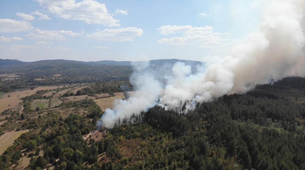 Пожарът край Горно Черковище не стихва втори ден (ВИДЕО/СНИМКИ)