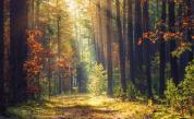 Есента напомня за себе си, очакват ни дъждове