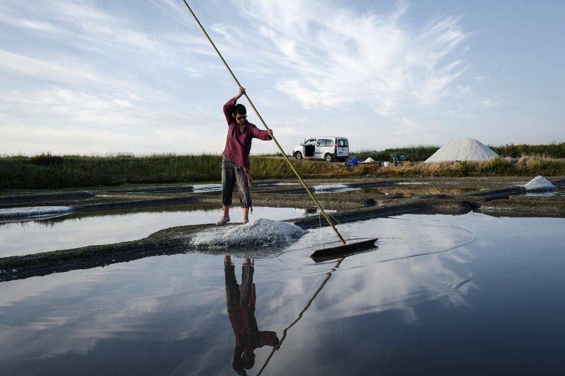 <p>Тя се събира ръчно, използвайки уникалните потомствени умения на работниците. Тя е 100% натурален и нерафиниран продукт и не съдържа никакви добавки. От 2012г. е обявен за защитен географски регион и производство.</p>